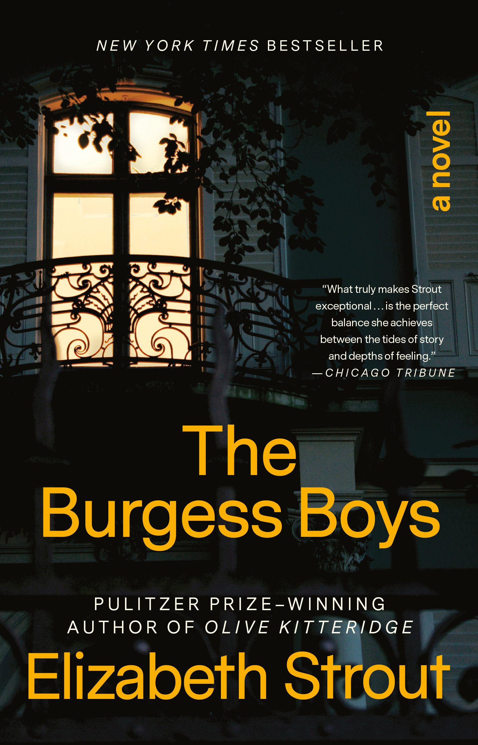 The Burgess Boys A Novel