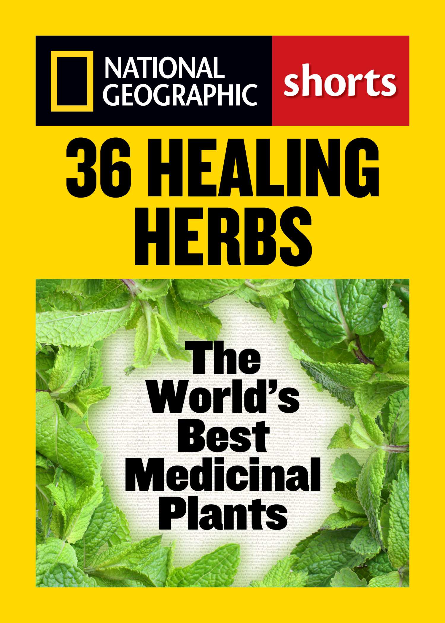 36 Healing Herbs The World's Best Medicinal Plants
