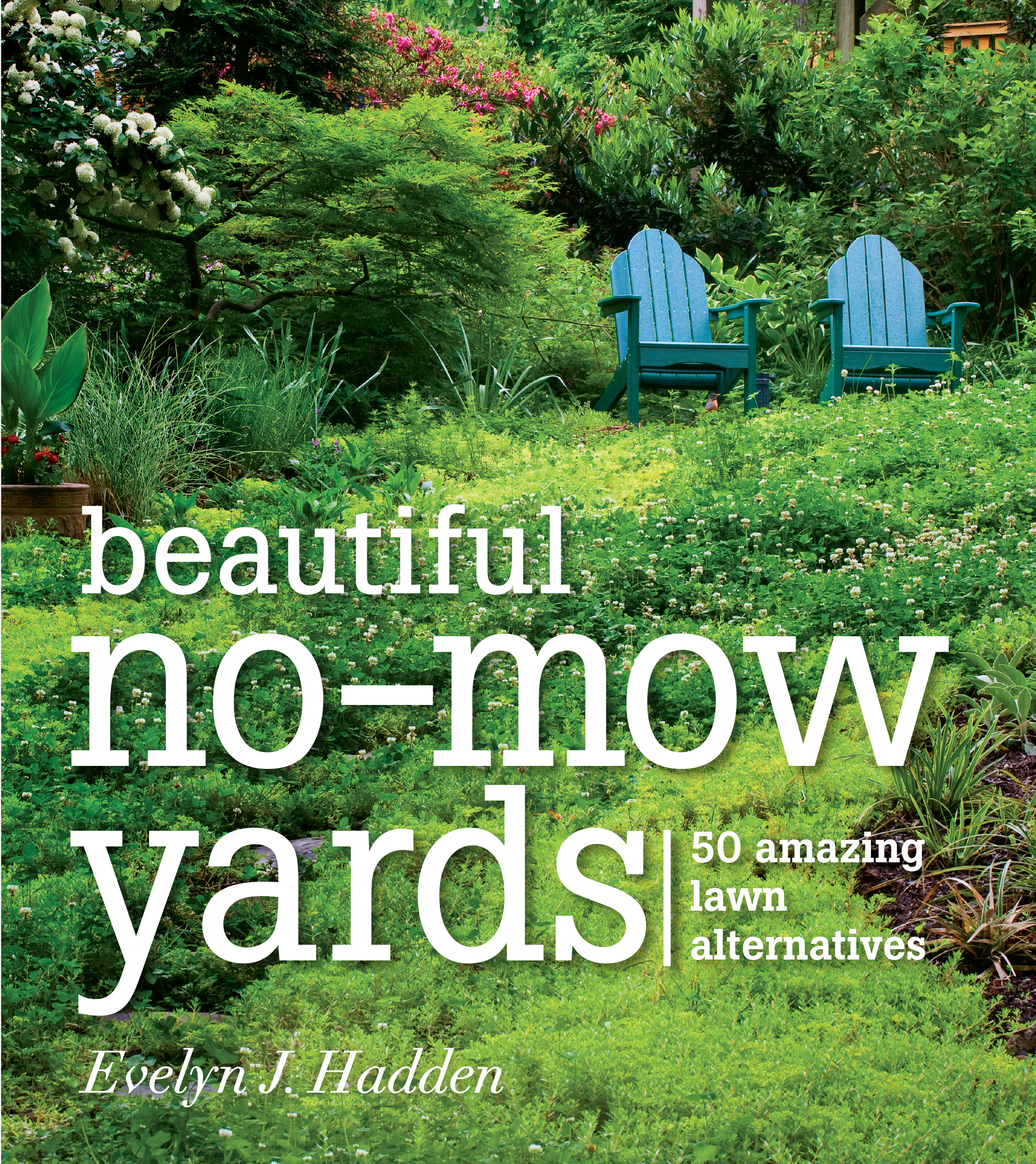 Beautiful No-Mow Yards 50 Amazing Lawn Alternatives
