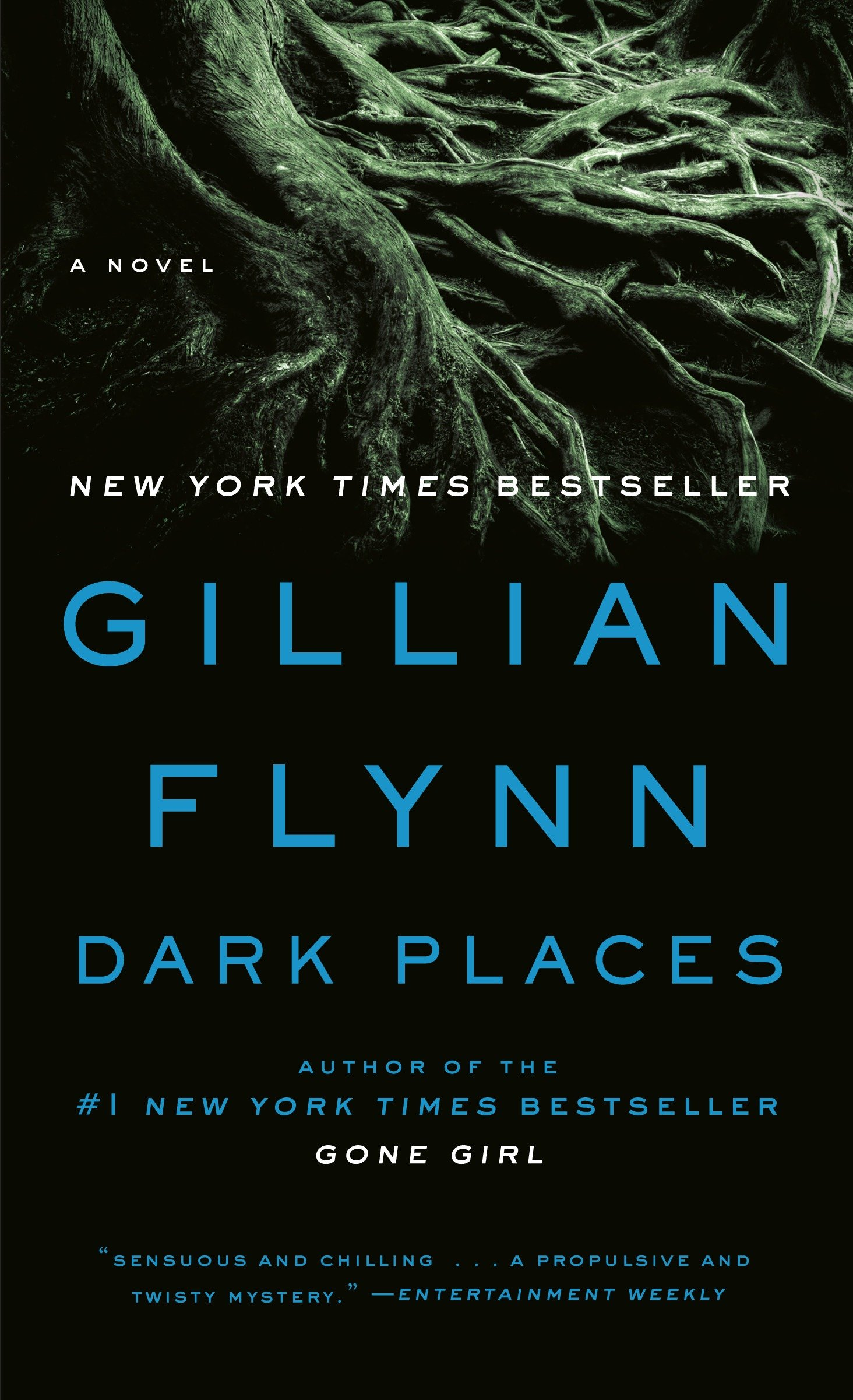 Dark Places A Novel