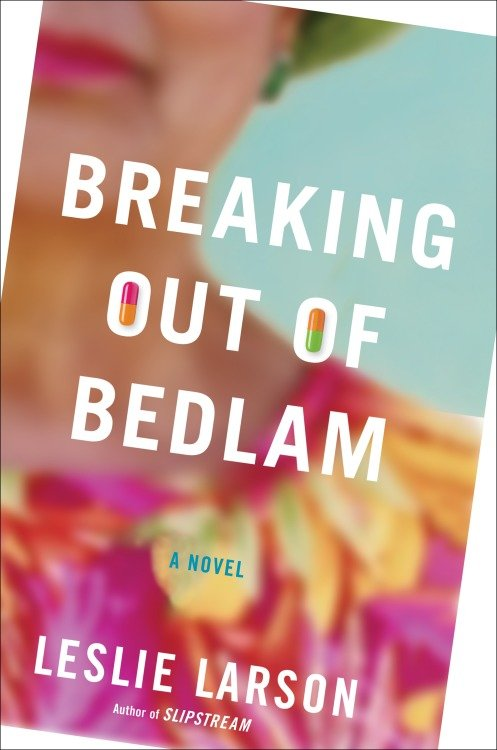 Breaking Out of Bedlam A Novel