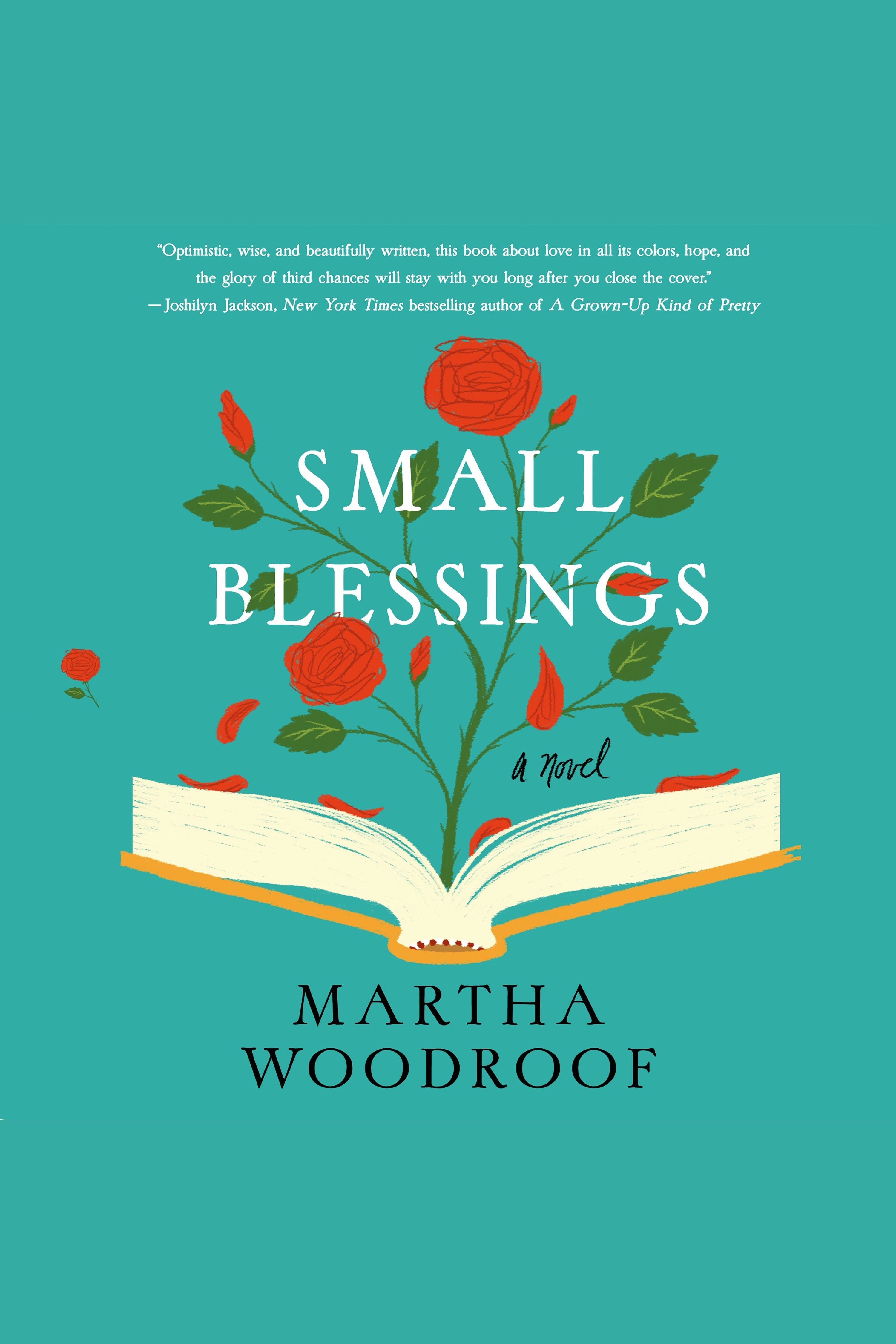 Small blessings cover image