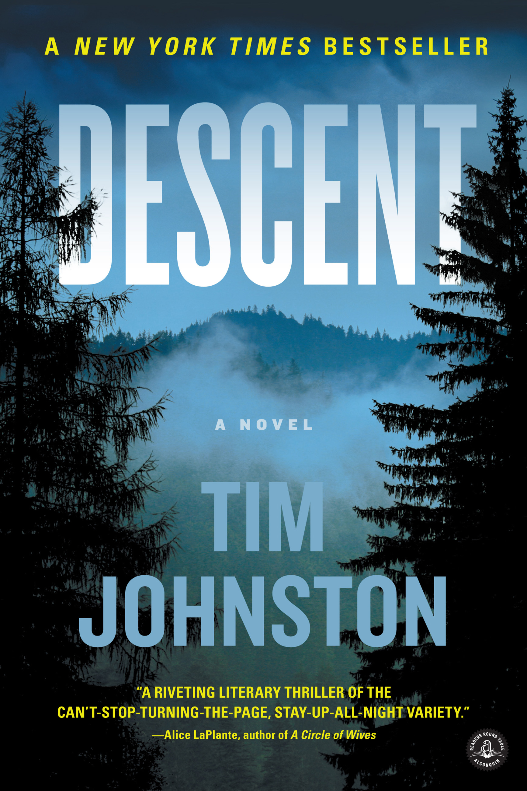 Descent : a novel