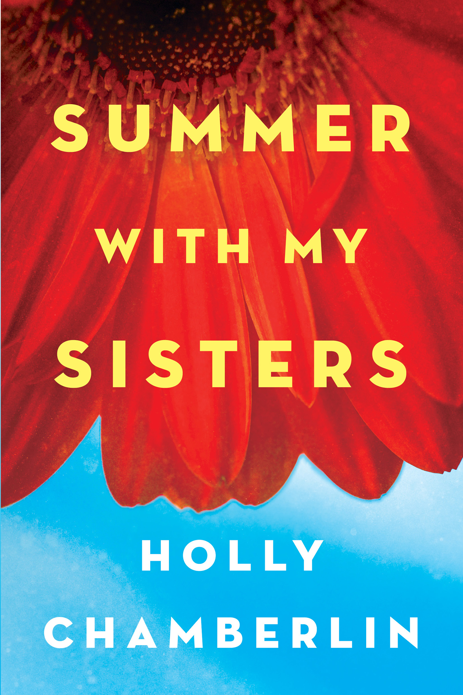 Summer with my sisters cover image