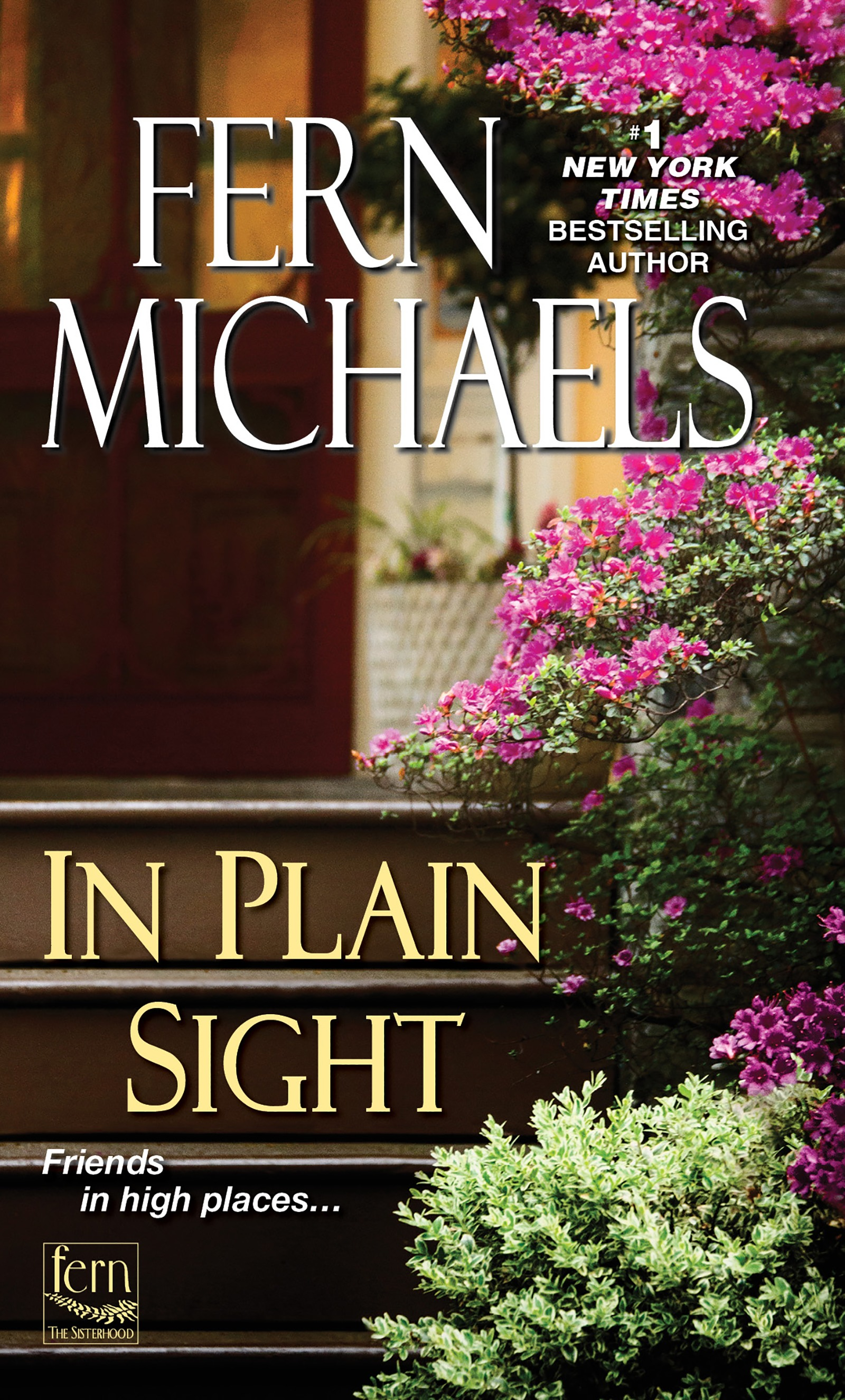 In plain sight cover image