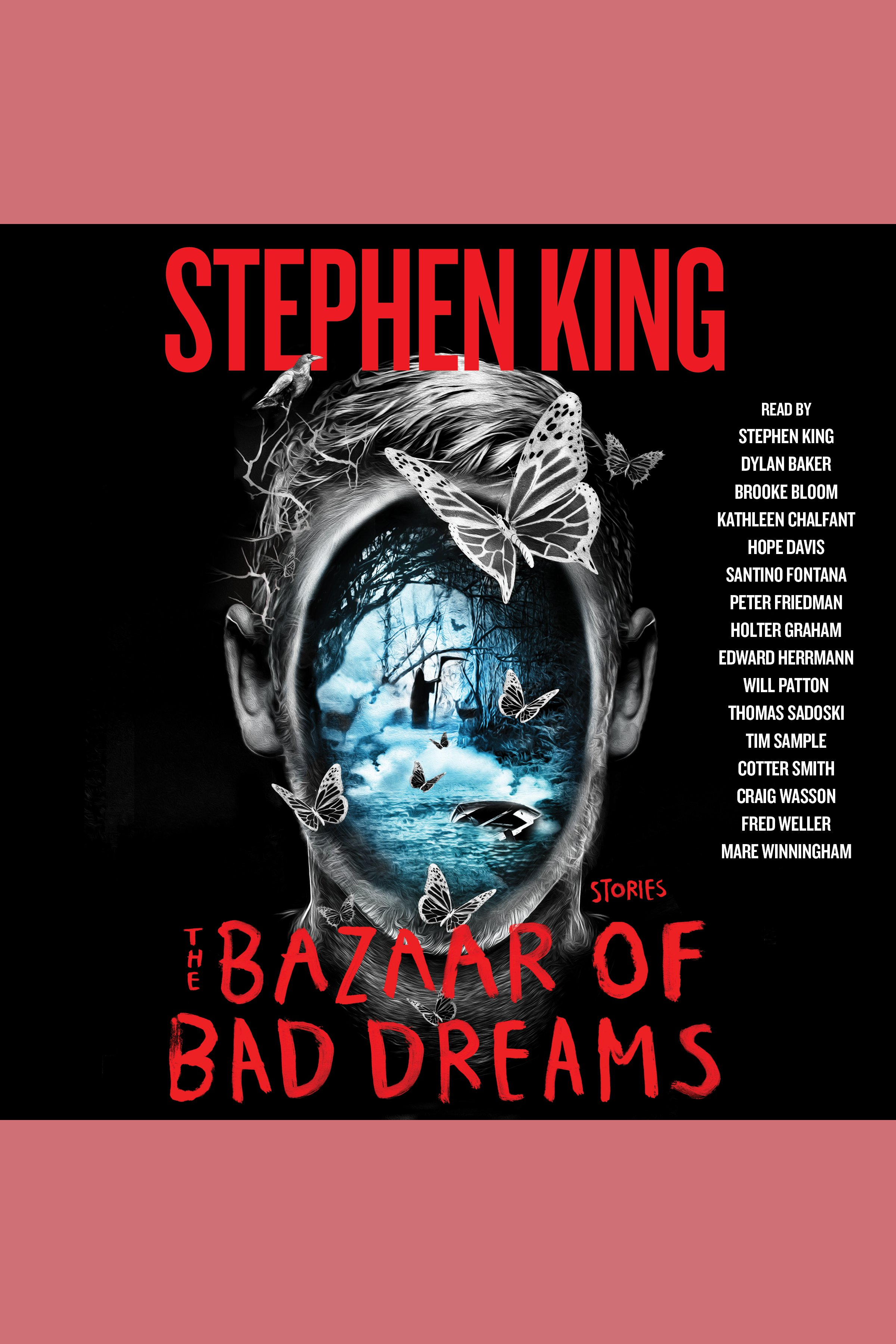 The bazaar of bad dreams stories cover image