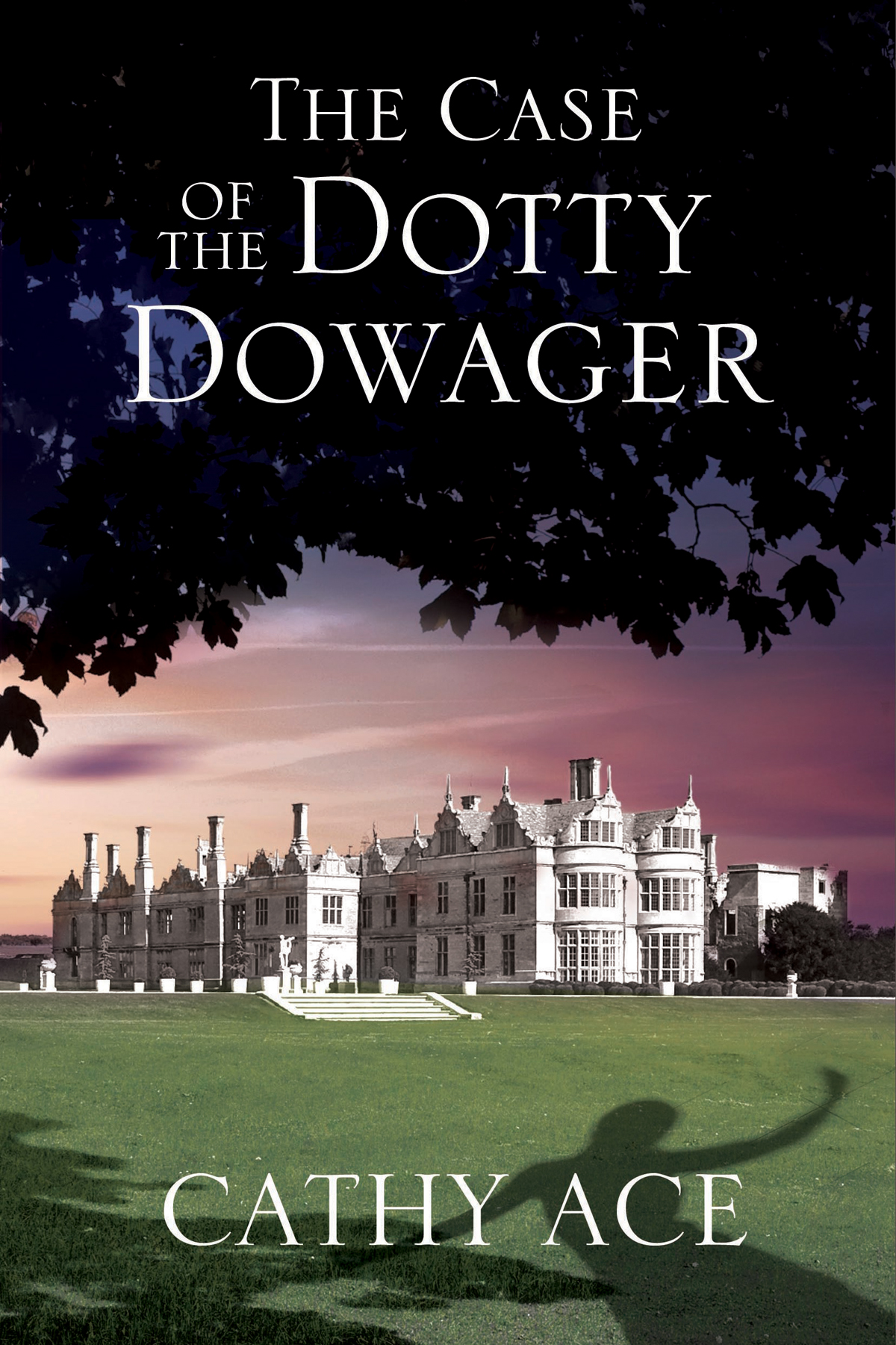 The Case of the Dotty Dowager A cosy mystery set in Wales