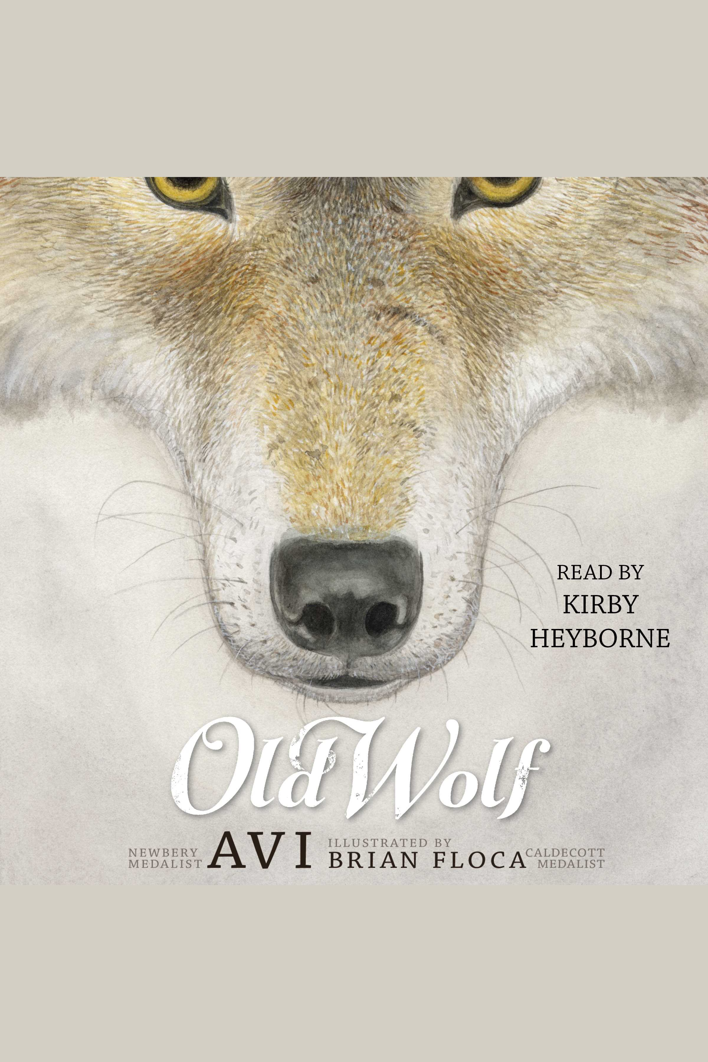Old wolf cover image