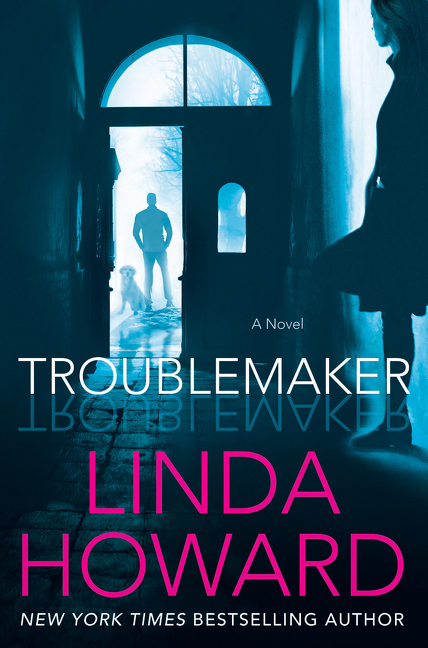 Troublemaker A Novel