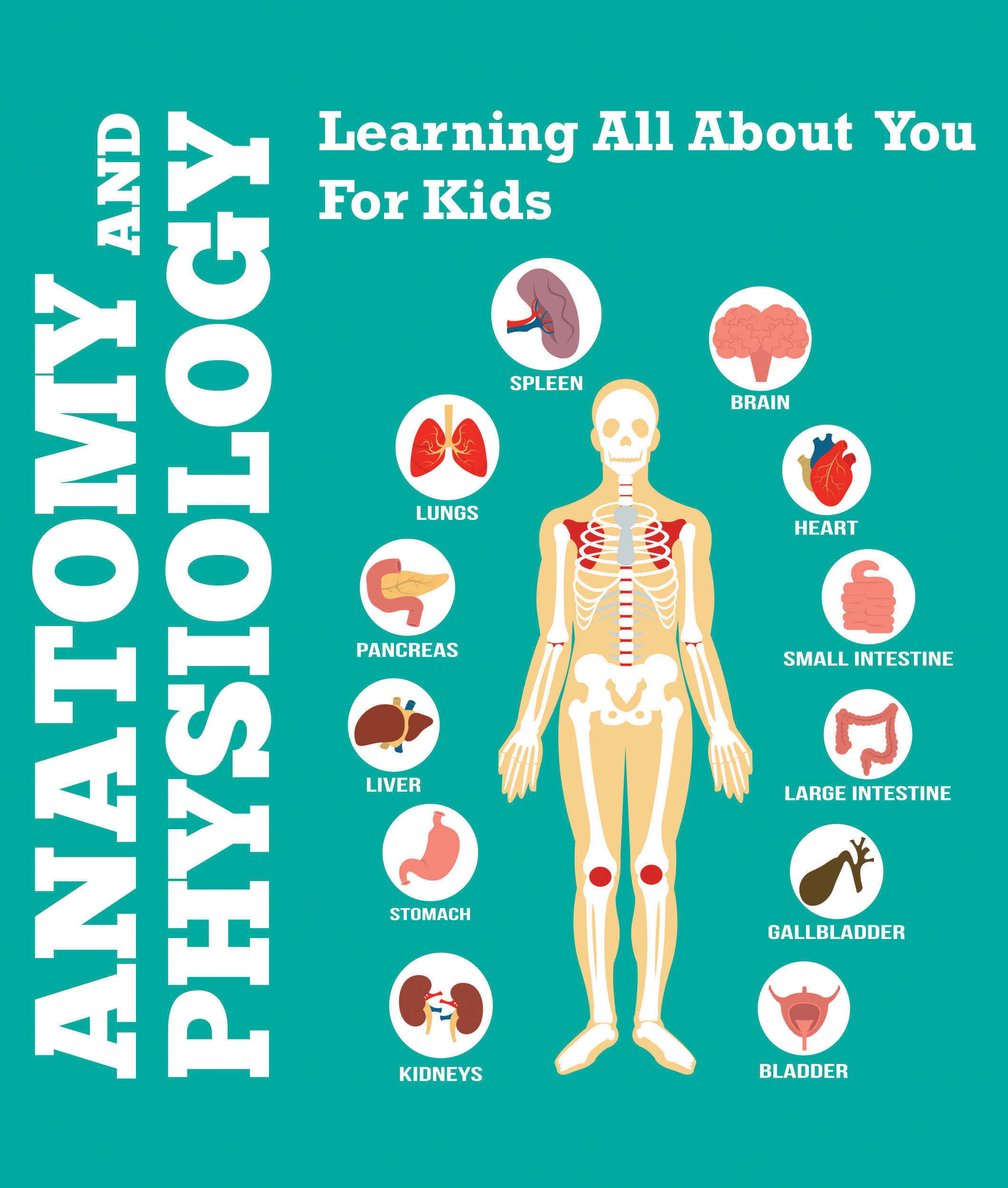 Anatomy And Physiology: Learning All About You For Kids Human Body Encyclopedia