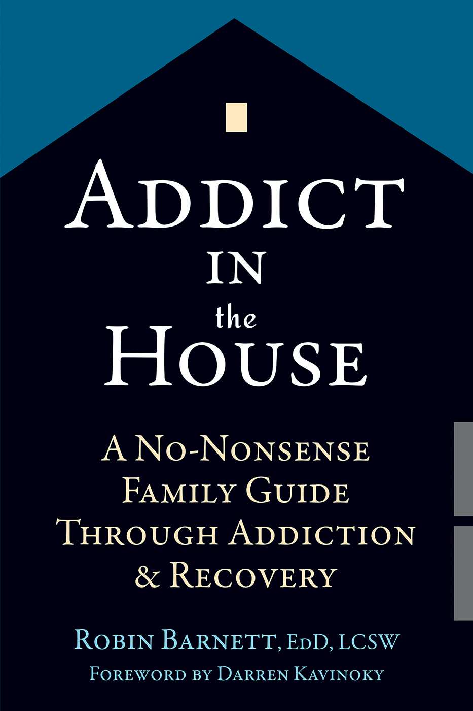 Addict in the House A No-Nonsense Family Guide Through Addiction and Recovery
