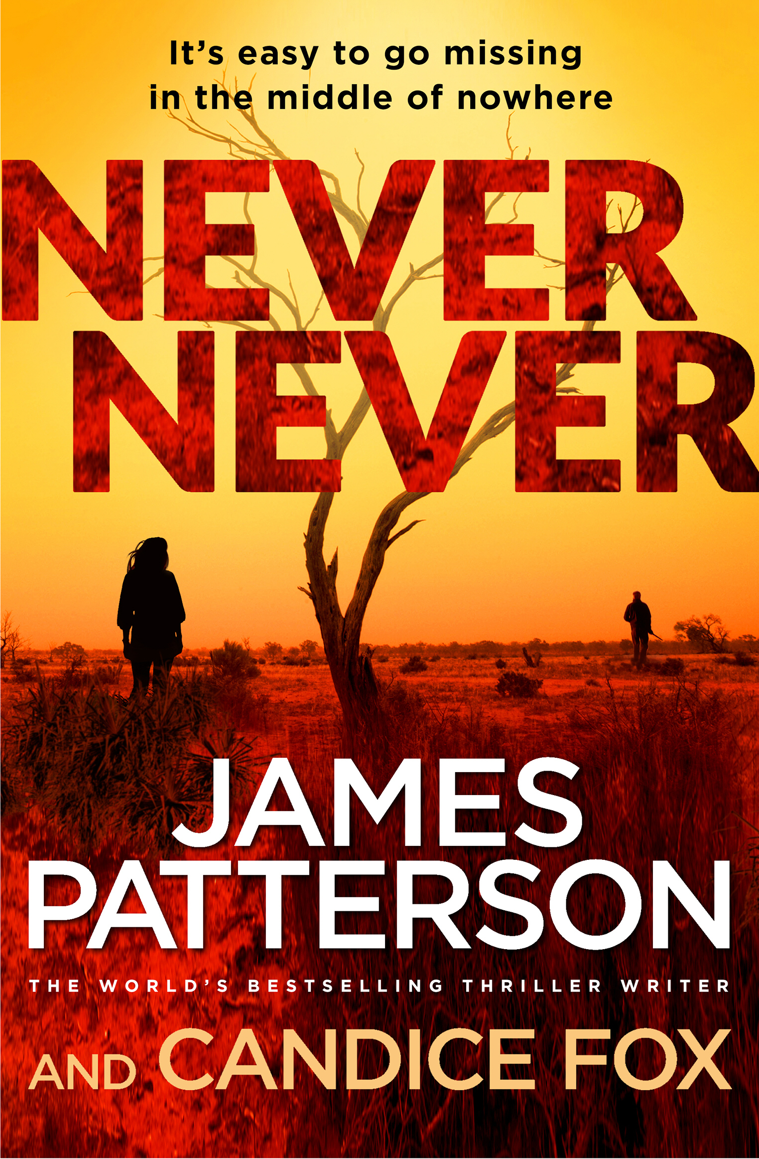 Search results for western cover image for never never fandeluxe Image collections