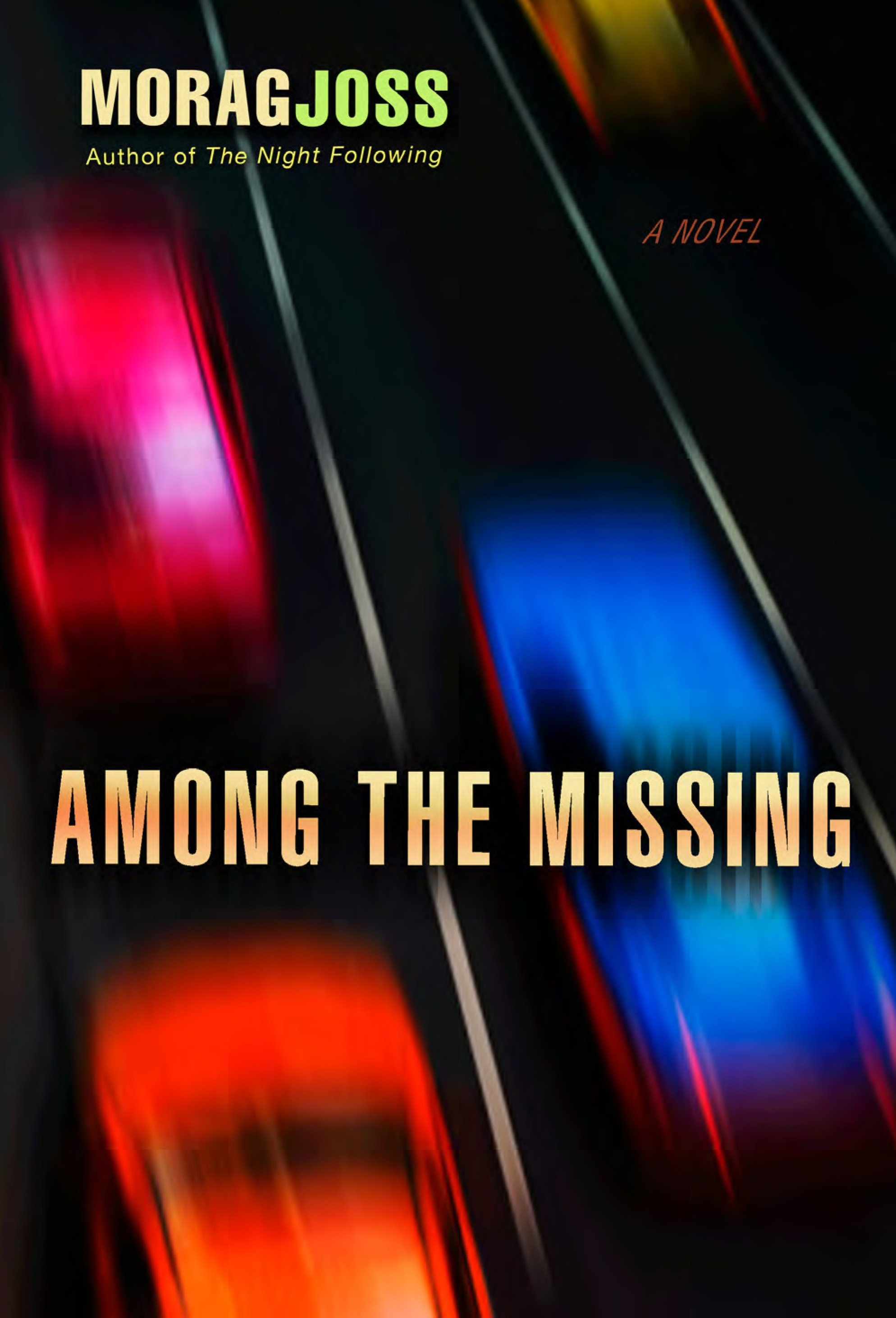 Among the Missing A Novel