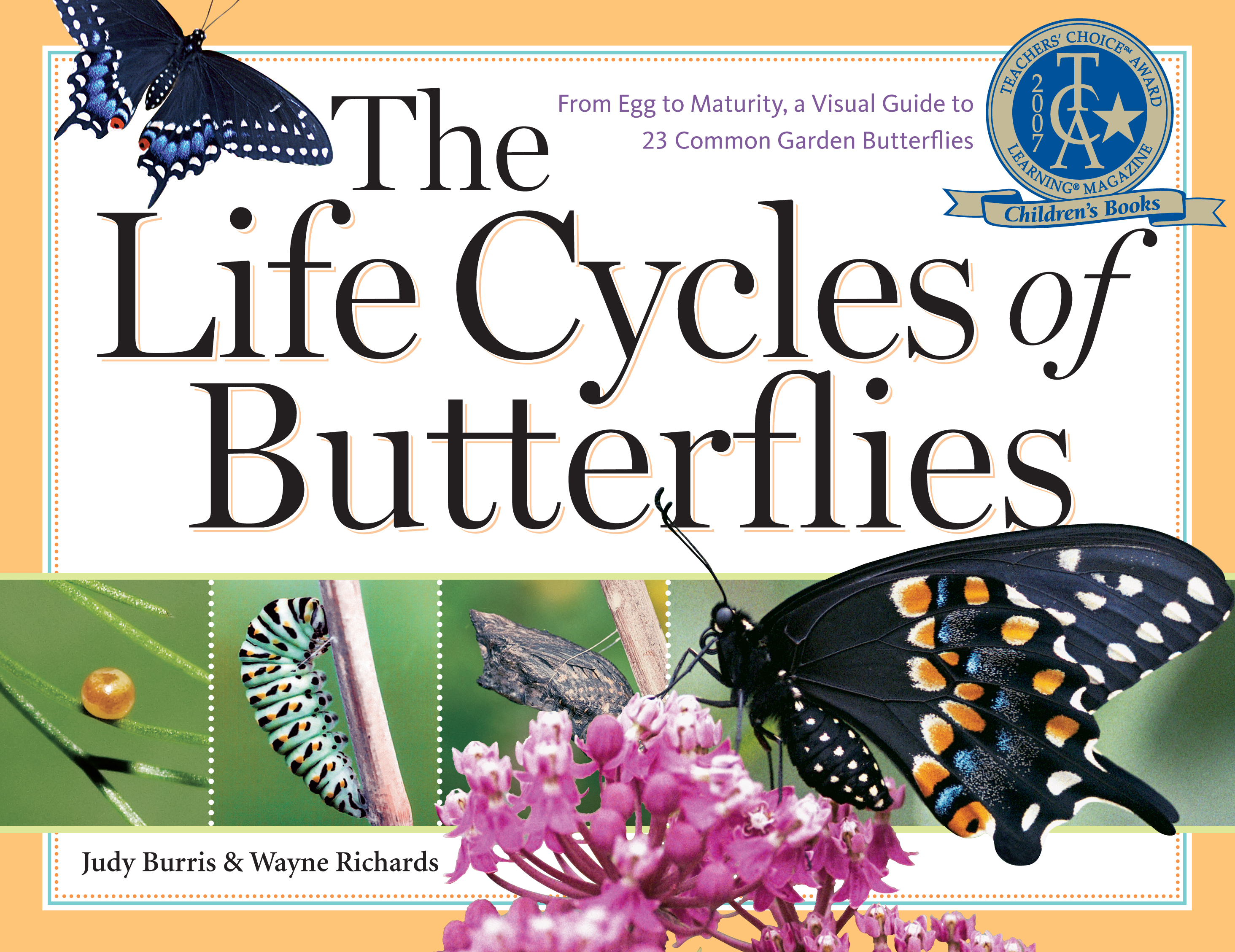 The Life Cycles of Butterflies From Egg to Maturity, a Visual Guide to 23 Common Garden Butterflies