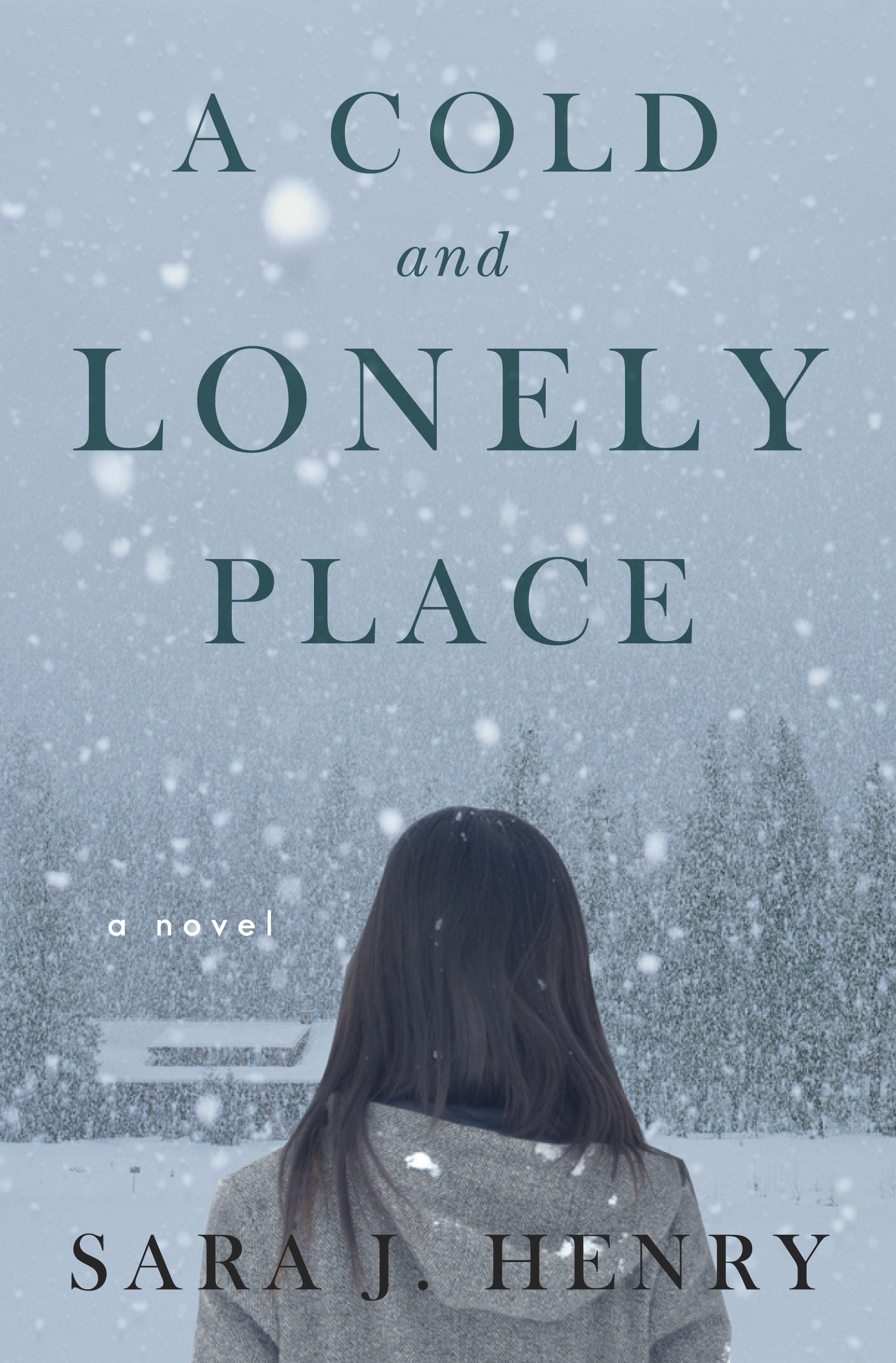 A Cold and Lonely Place A Novel
